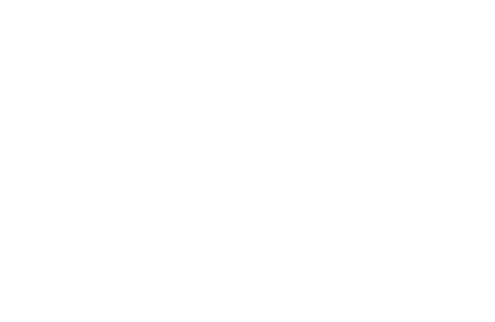 Mon & Joji vol.2 - A report on the 1st week.